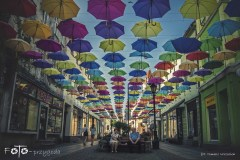 7-FOTO-Przygoda-w-Połczynie-Zdroju-Wiosna-19-2478b