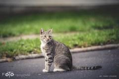 7-FOTO-Przygoda-w-Połczynie-Zdroju-Wiosna-19-2871b