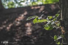 FOTO-Przygoda-w-Świdwinie-Wiosna-19-Agnieszka-Maciołek-020a