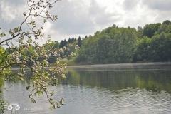 FOTO-Przygoda-w-Świdwinie-Wiosna-19-Ewa-Prygiel-010a