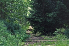 FOTO-Przygoda-w-Świdwinie-Wiosna-19-Katarzyna-Dągielska-013a