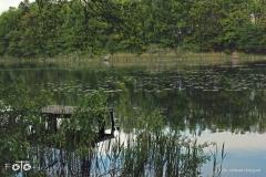 FOTO-Przygoda-w-Świdwinie-Wiosna-19-Milena-Hołojuch-016agotowe
