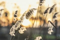 FOTO-Przygoda-w-Świdwinie-Wiosna-19-Wojciech-Hudaszek-014a