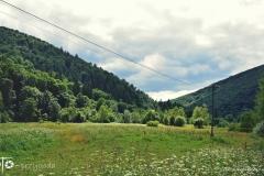 FOTO-Przygoda-w-Świdwinie-Wiosna-19-Zuzanna-Faltynowska-131a