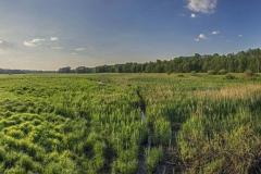 FOTO-PSTRYK - Dolina Rzeki Iny [Maj 18] 044-054b