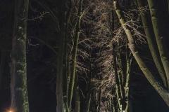 FOTO-Pstryk w plenerze - Goleniów Nocą [Luty 19] 033bb