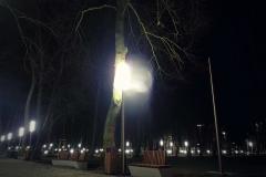 FOTO-Pstryk w plenerze - Goleniów Nocą [Luty 19] - Kazimiera Charzyńska 025b