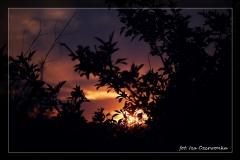 Iza Czerwonka [Kwiecień 18] 001_Fotorgotowe