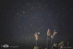 FOTO-Przygoda-w-Świdwinie-Wiosna-19-0544b