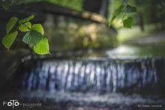 FOTO-Przygoda-w-Świdwinie-Wiosna-19-1448b