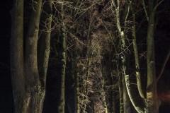 FOTO-Pstryk-w-plenerze-Goleniów-Nocą-Luty-19-040bbgotowe
