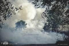 Pożar-w-Tarnowie-Sierpień-19-020b