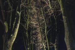 FOTO-Pstryk w plenerze - Goleniów Nocą [Luty 19] 053bb
