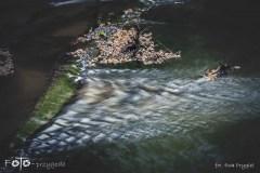 FOTO-Przygoda-w-Świdwinie-Wiosna-19-Ewa-Prygiel-046a