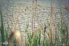 FOTO-Przygoda-w-Świdwinie-Wiosna-19-Marta-Mroczek-031a