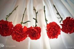 FOTO-Pstryk-kwiaty-na-wystawę-na-dzień-kobiet-2019-Bożena-Opatowicz-009b