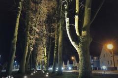 FOTO-Pstryk-w-plenerze-Goleniów-Nocą-Luty-19-Irena-Wiśniewska-002b