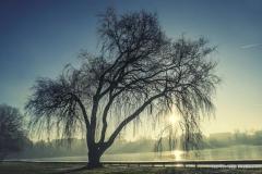 Jezioro Nowogardzkie [Styczeń 18] 015b