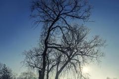 Jezioro Nowogardzkie [Styczeń 18] 075-079b