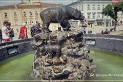 Grażyna Piechowska [Zdjęcia Własne] 038