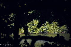 Plener w Dłusku - Julia Igielska [Lipiec 18] 160b