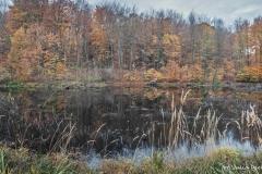 Plener w Podlipcach - Julia Igielska [Listopad 18] 010b