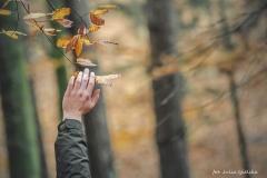 Plener w Podlipcach - Julia Igielska [Listopad 18] 080b