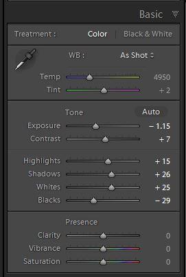 Lightroom develop Basic panel