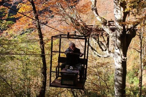 gurgen agacindaki kovanlara teleferikle 4 13779988 o - Gürgen ağacındaki kovanlara teleferikle ulaşıyorlar