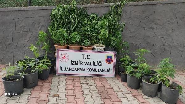 İzmir'de uyuşturucu tacirlerine operasyon; 11 gözaltı