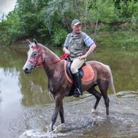 Лошади, гуси, собаки, козы… Фото - Николай Ефремов