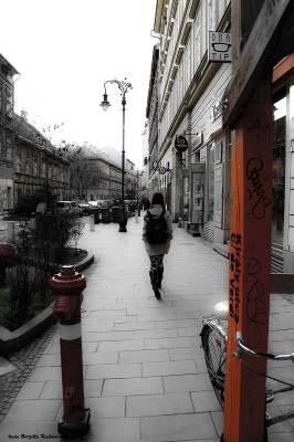street_20140214_wandere