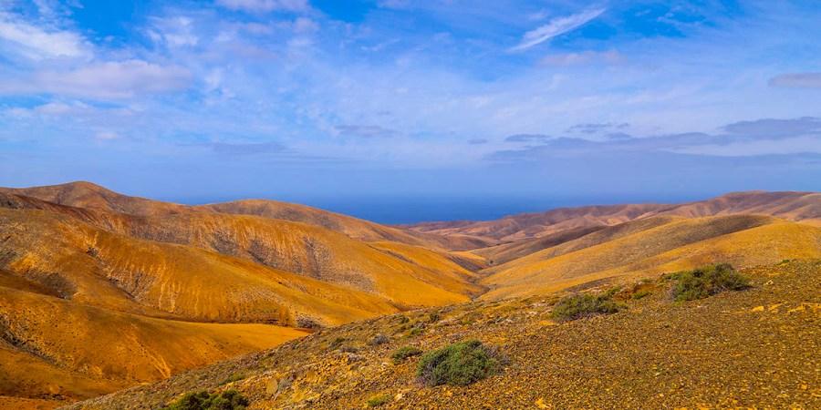 Fuerteventura View