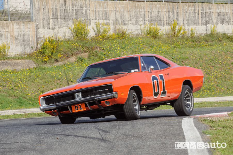 Profile view General Lee Hazzard on the track at the Isam in Anagni
