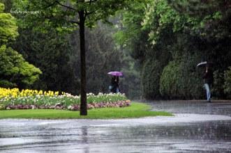 Walking in the pouring rain. Location: Prague, Czech Republic