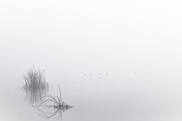 Sitll und starr ruht der See