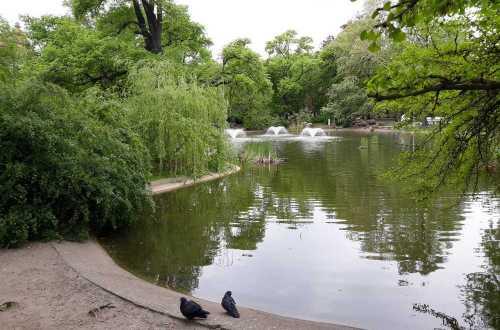 Park Thomasa Woodrowa Wilsona - Poznań