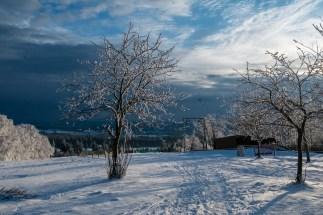 Hoherodskopf, fotografiert von Adalbert Fleck