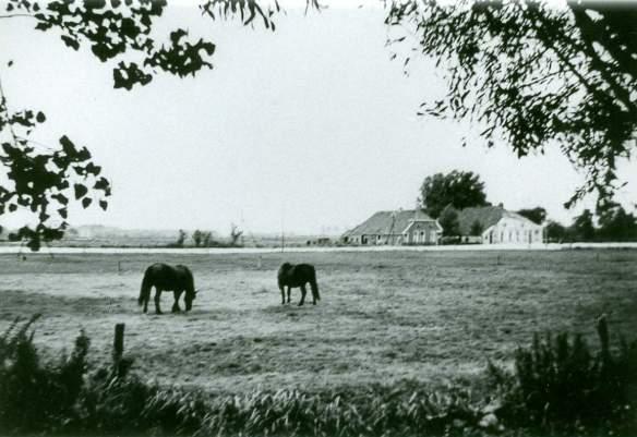 Scholtenswijk 4