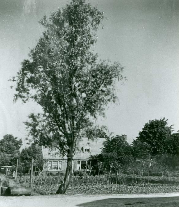 Scholtenswijk woning