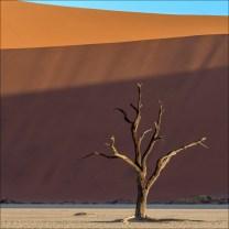 18-namibië landscape-14