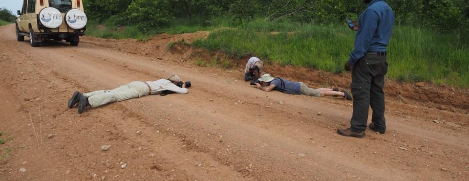 Greet Verelst – Op reis met Brigitte en Guy (Tanzania en Myanmar)