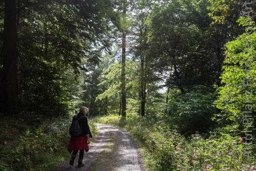 Lutherweg HEF-Niederaula-44