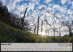 Kalender_02_Feb15