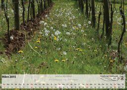 Kalender_03_Mrz15