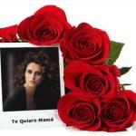 Rosas Rojas para el Día de la Madre.