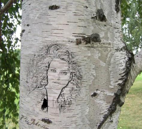 Grabar una imagen en un árbol.