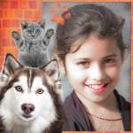 Montajes con gatos y perros gratis