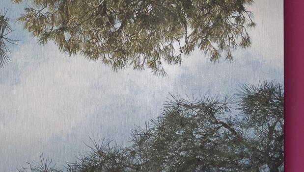 Detail aus dem Bild oben, auf dem man die Struktur des Untergrundes sieht.