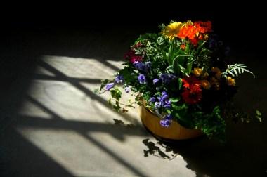 basket of flowers in the sunlight